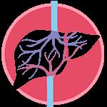 Всё о лечении Гепатита, болезни печени, их лечение и советы