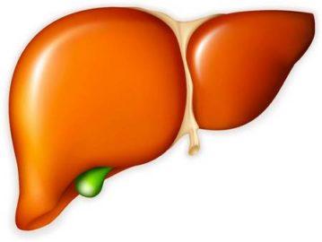 Анализ ПЦР на гепатит С