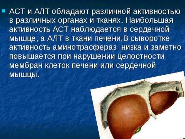 Описание АСТ и АЛТ