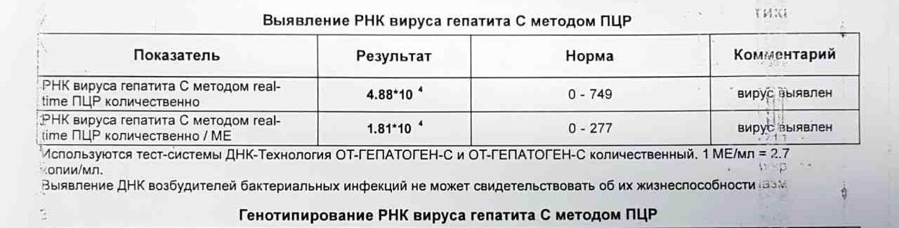 Анализ ПЦР
