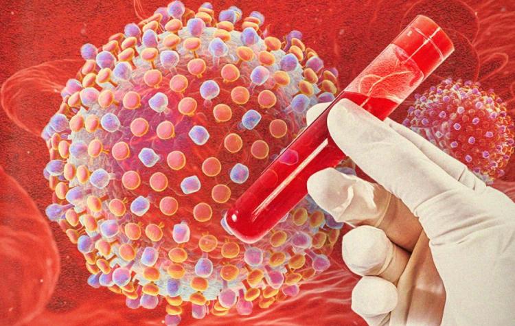 вирус и кровь