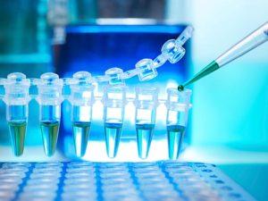 На гепатит анализ можно сдавать натощак или нет thumbnail