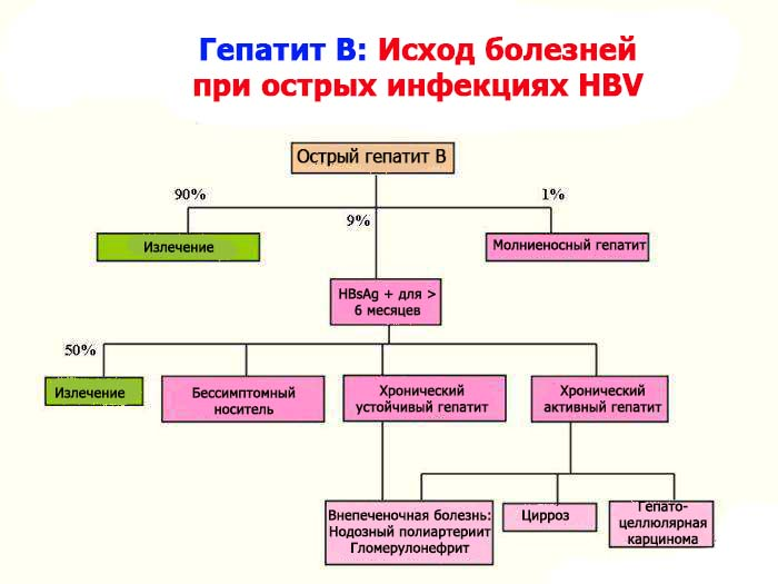 гепатит в схема