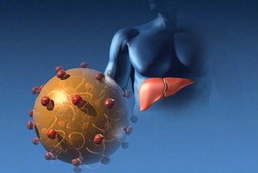 Сколько можно прожить с HBV