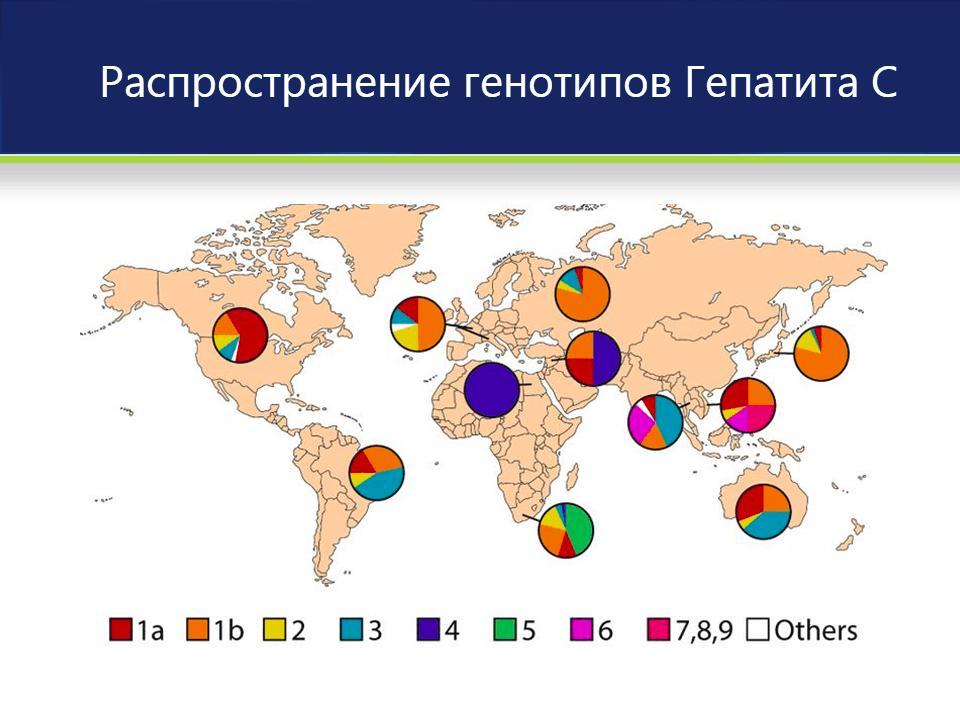 распространение генотипов гепатита с