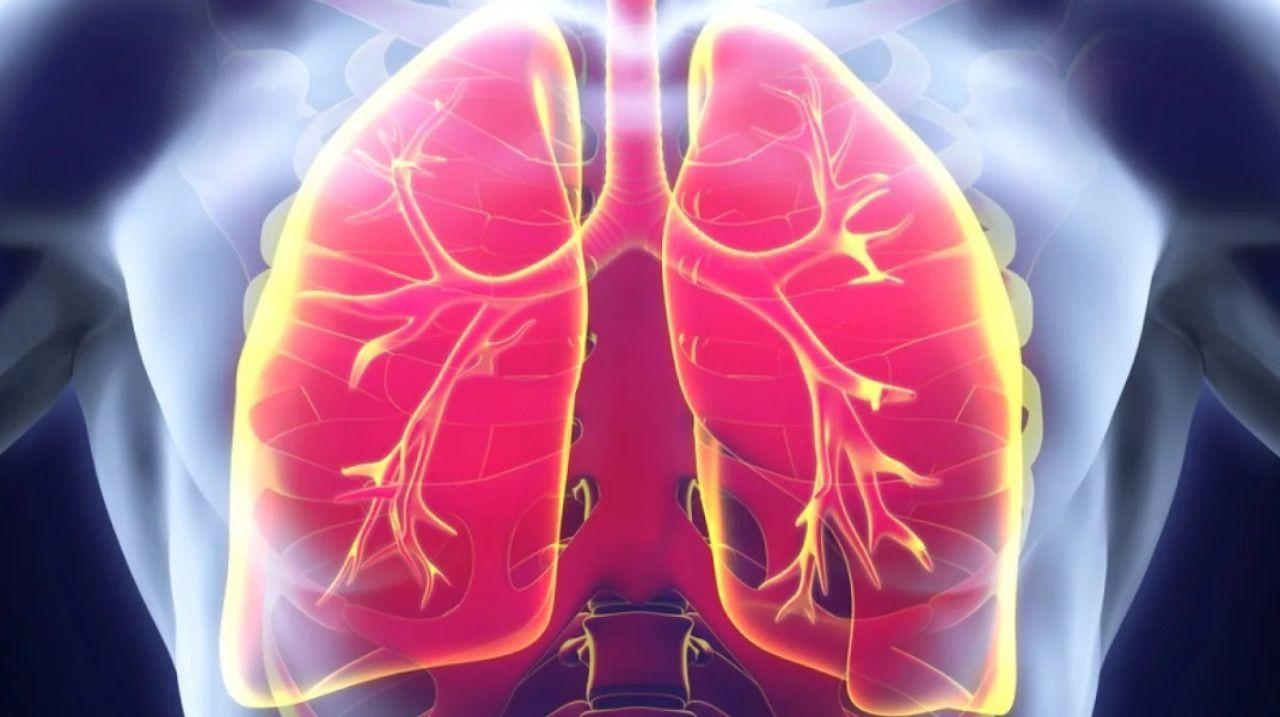 Восстановление легких после фиброза