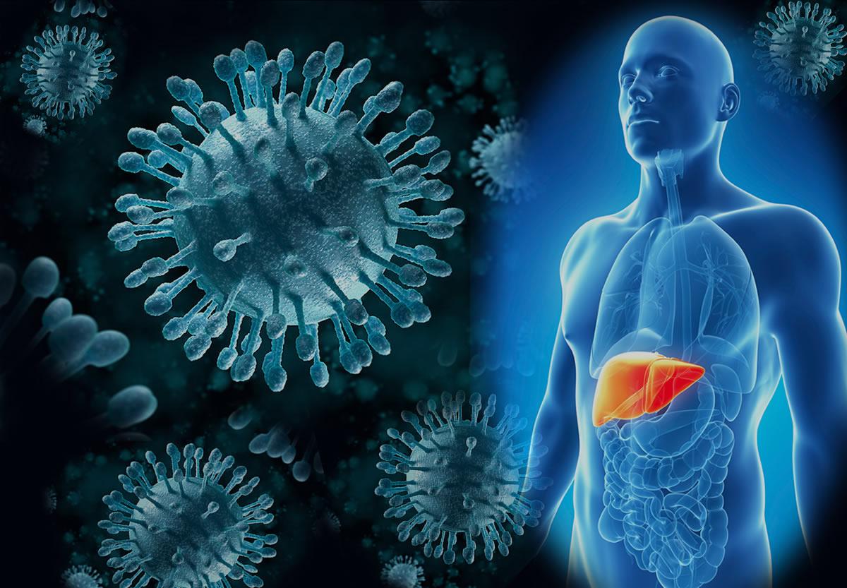 Стоимость лечения гепатита в 2020